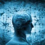 文法中枢が脳内に存在する科学的証明