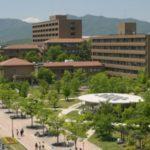 新しい大学国際化の形